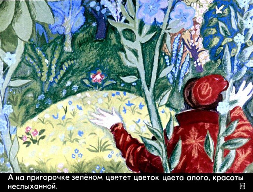 нарисовать рисунок к сказке аленький цветочек аксакова картинки фото пойму кто