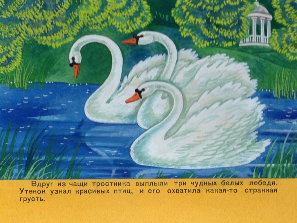 Картинки красивые одинокие лебеди старом сайте