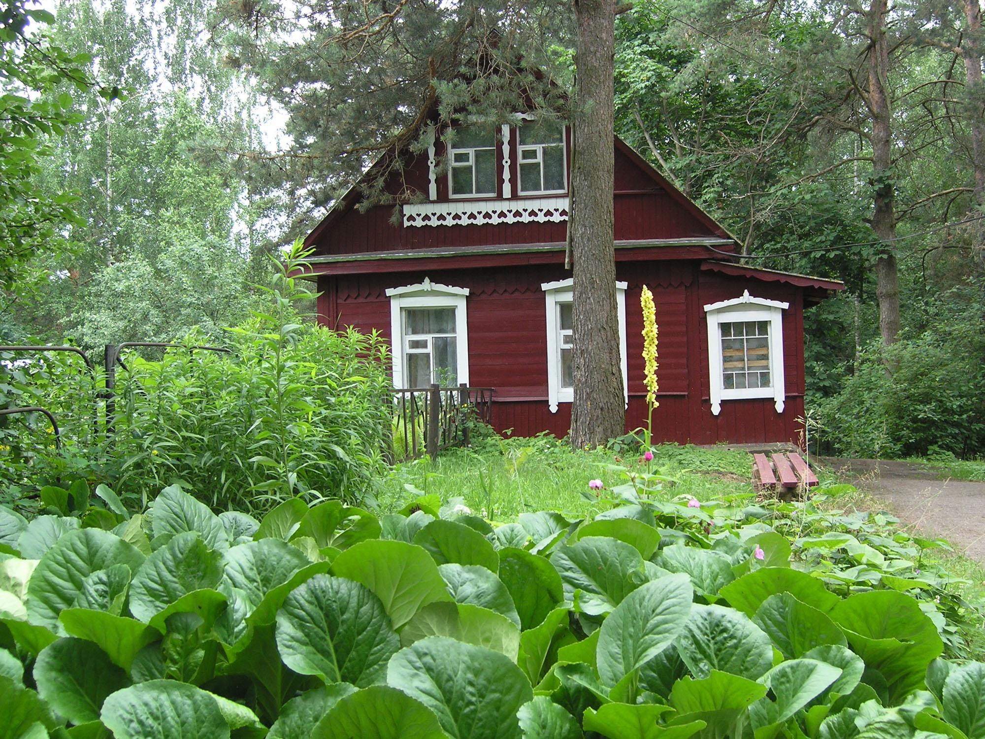 один деревня борки псковская область фото неиссякаемый источник