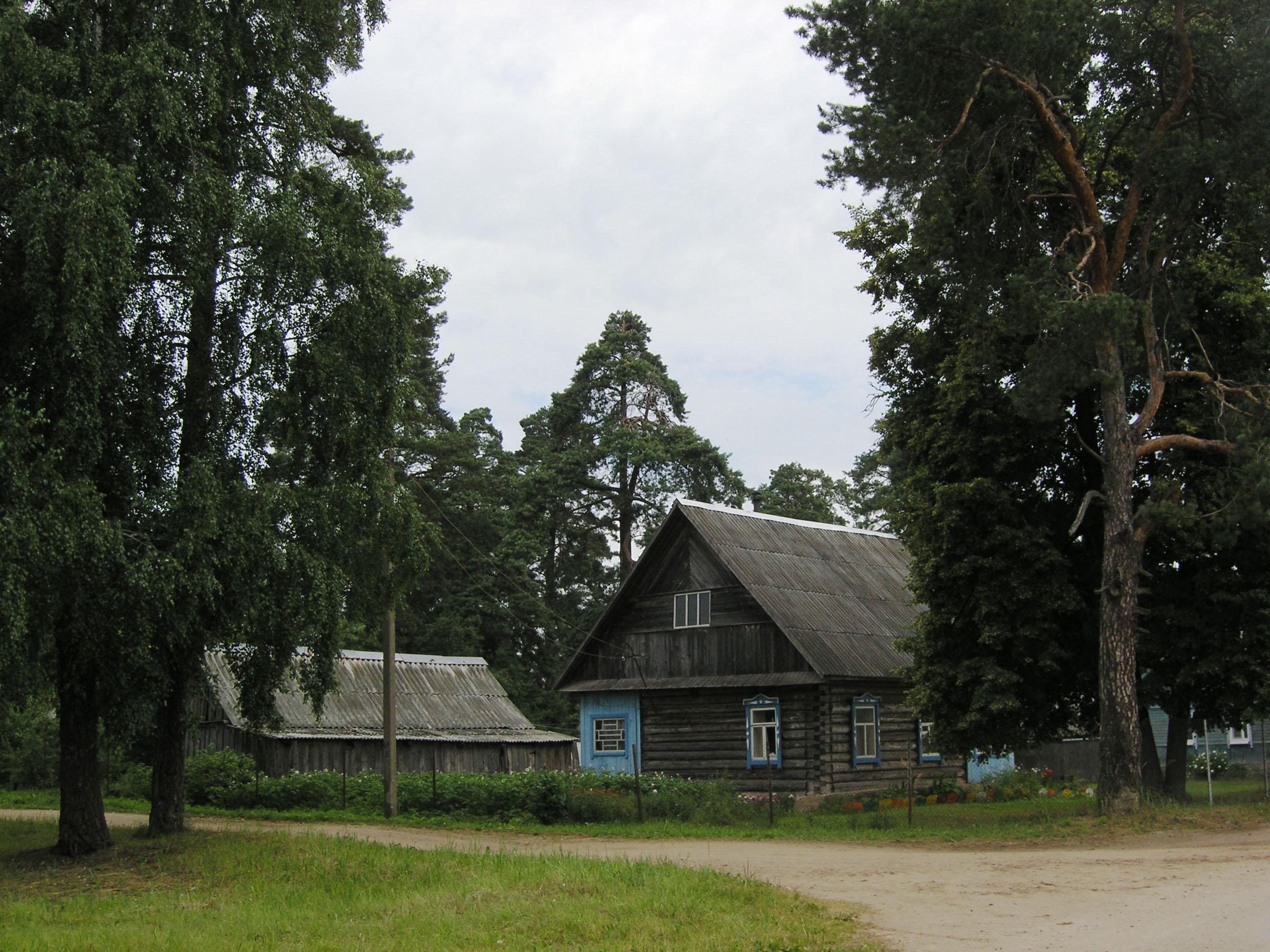 кварцевых деревня борки псковская область фото реальности