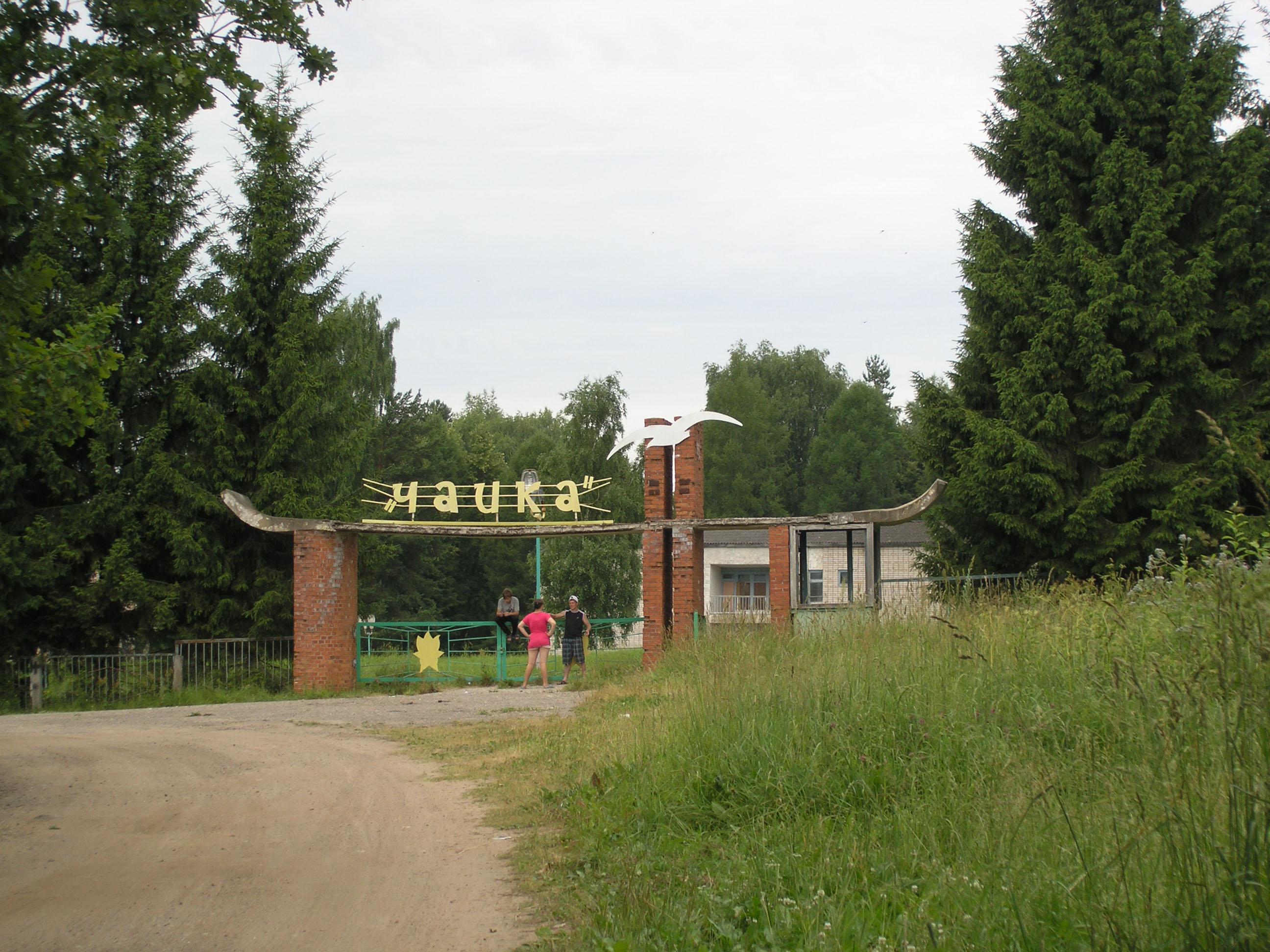 деревня борки псковская область фото чему