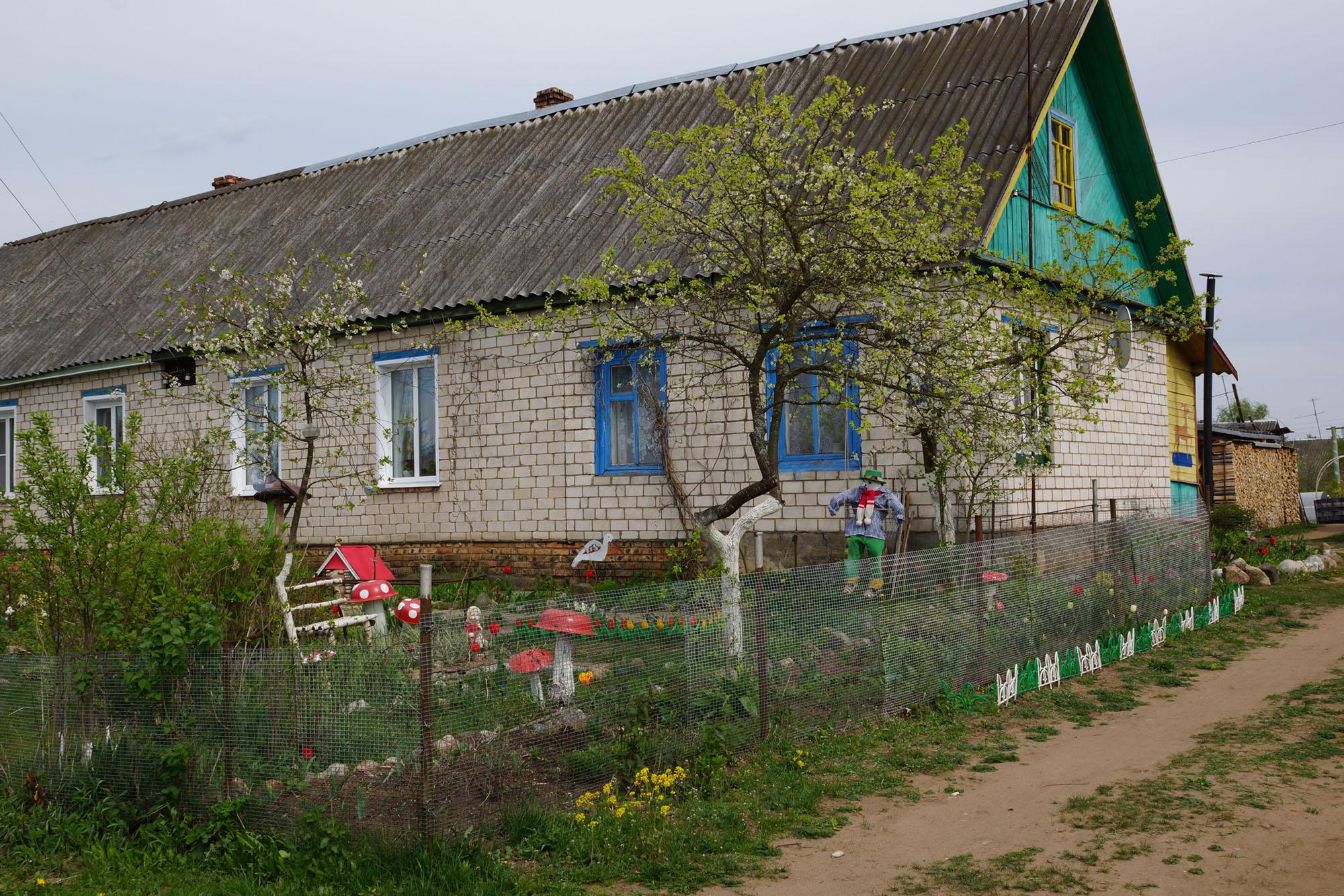 деревня борки псковская область фото