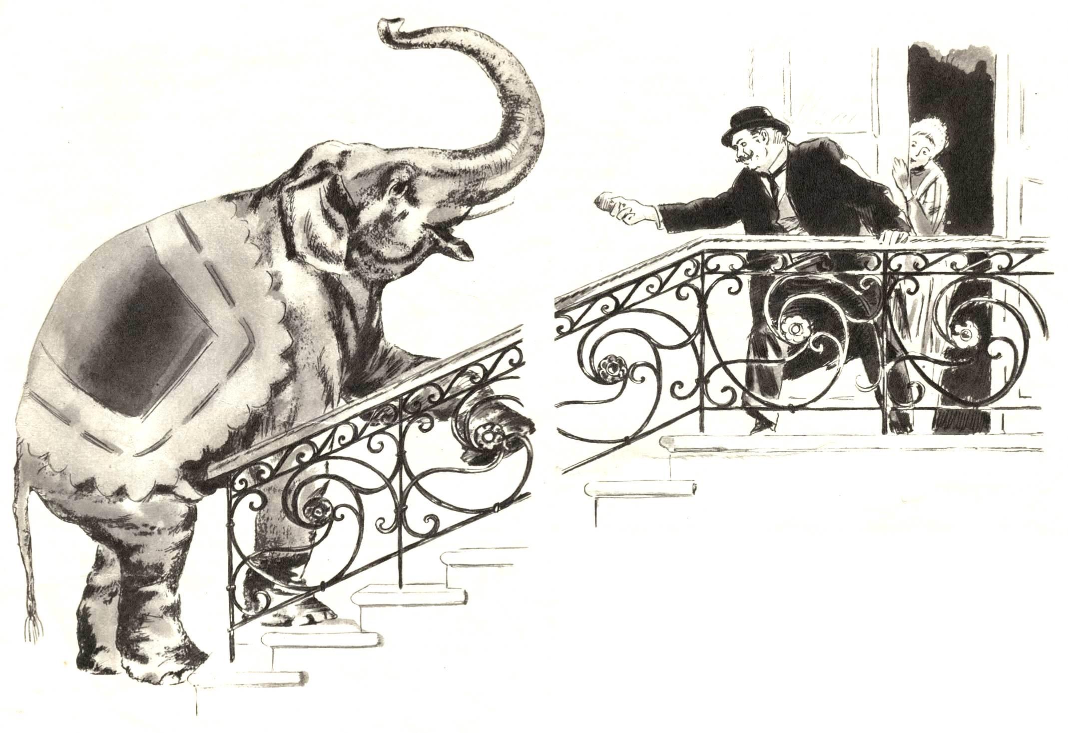 Раскраска слон куприн