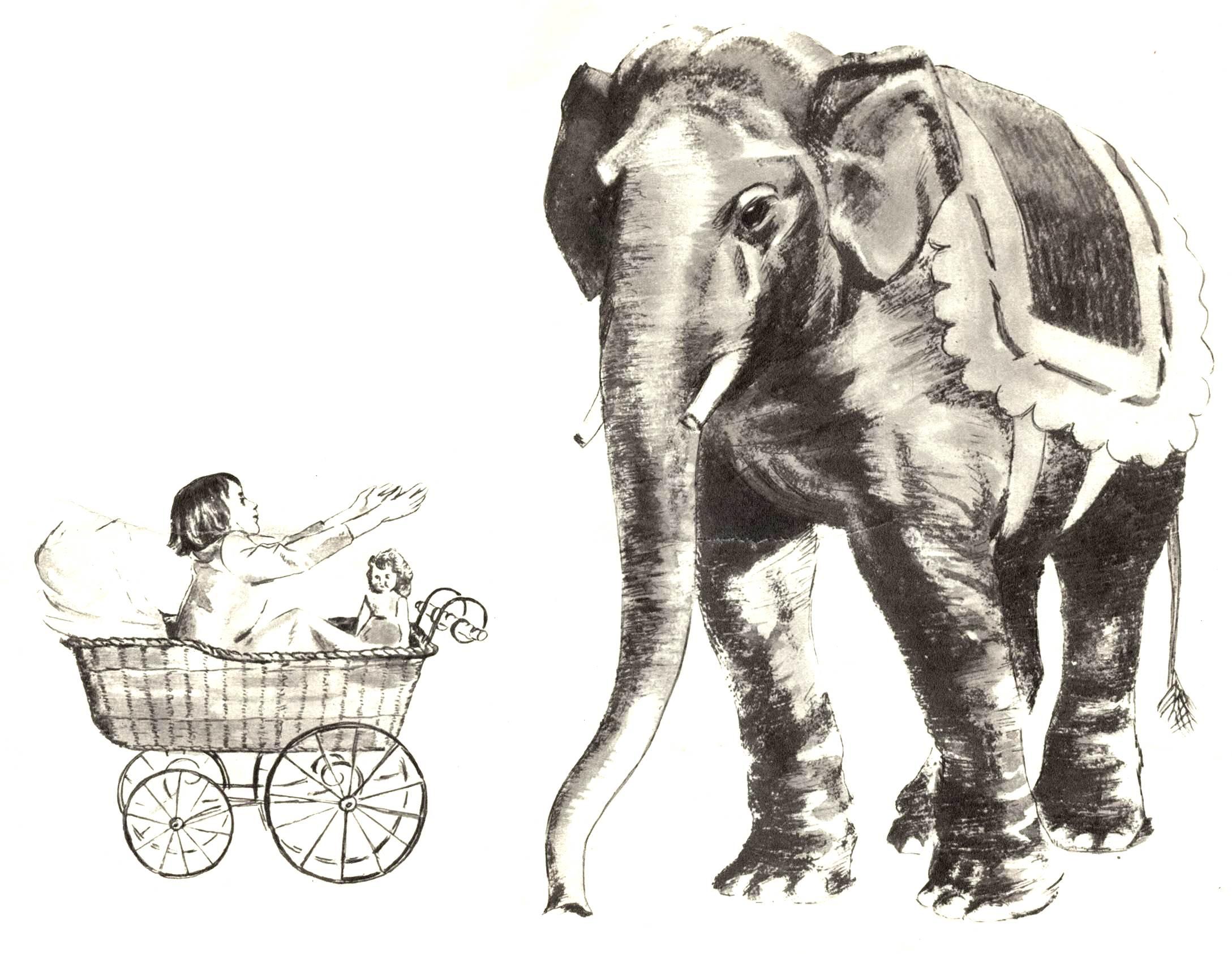 картинки куприн слон
