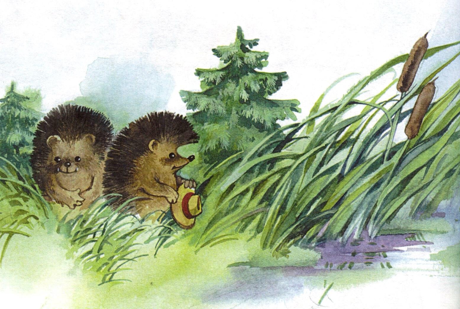 иллюстрации к сказкам ежик подсматривает сестрой