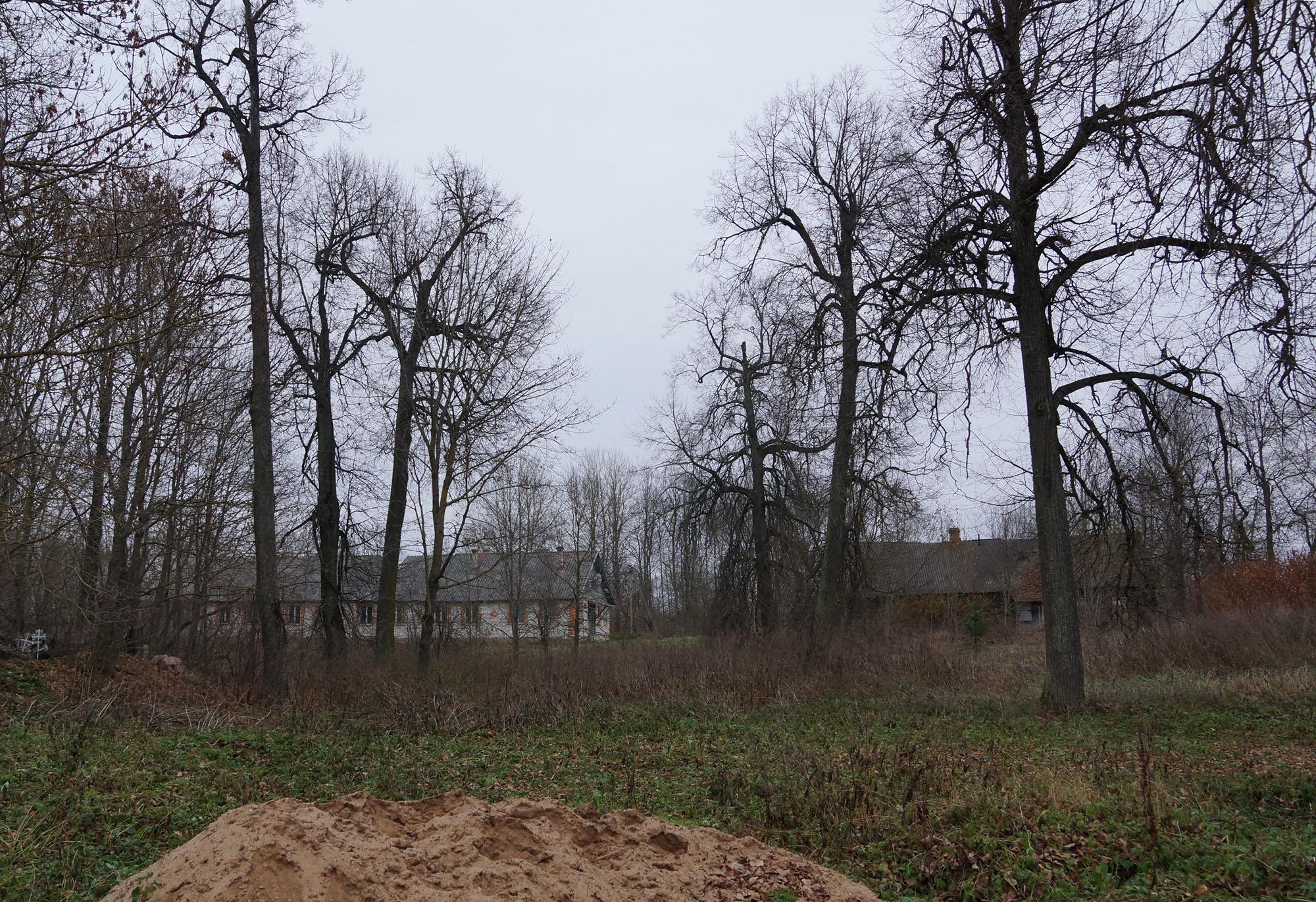 Добрывичи, Бежаницкий район, Псковская область. Парк.