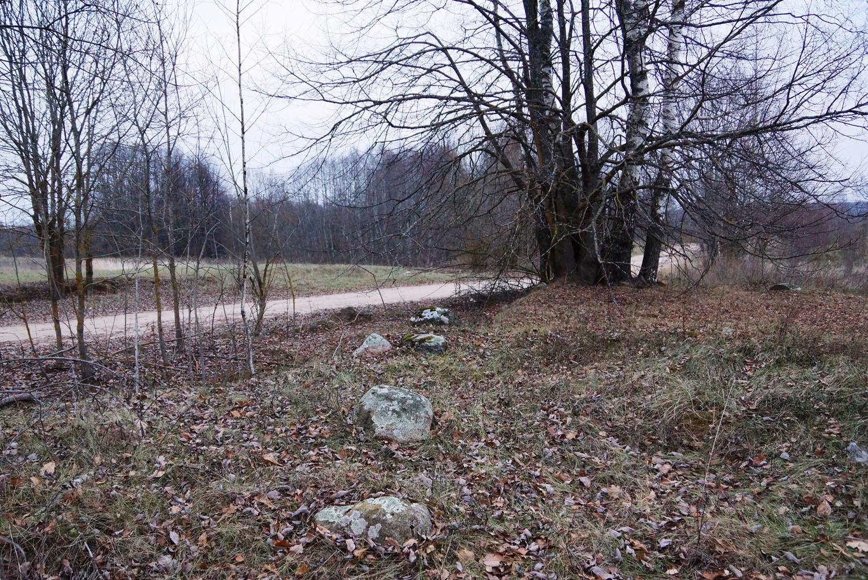 Маютино, Бежаницкий район, Псковская область. Жальничный могильник Добрывичи-3.