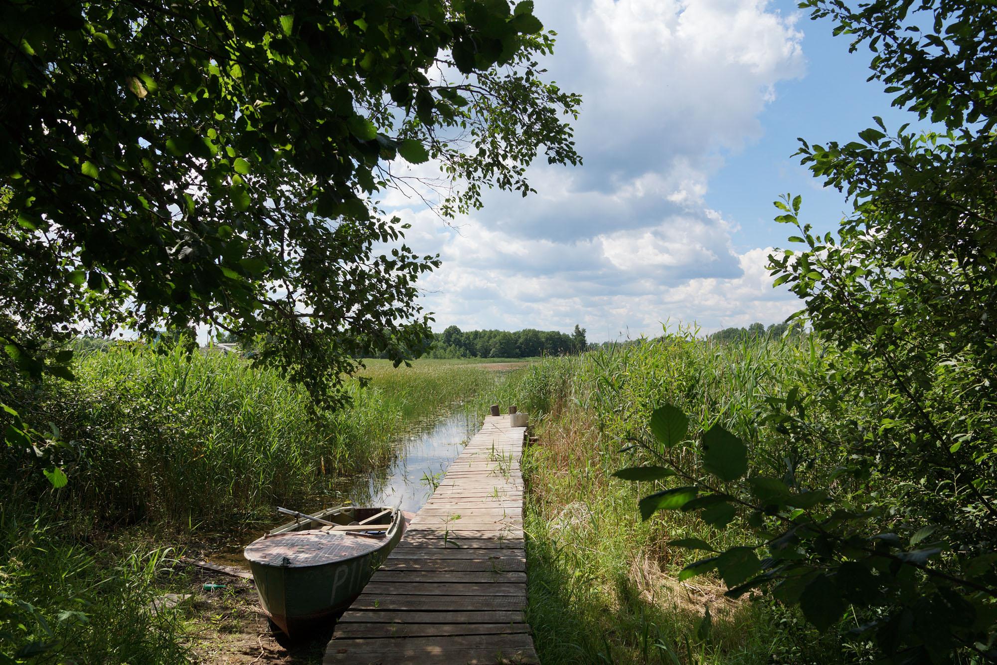 Бежаницкий район, Псковская область. Северная часть Кудеверского ландшафта.